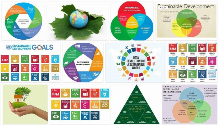 Sustainable Development in Dictionary